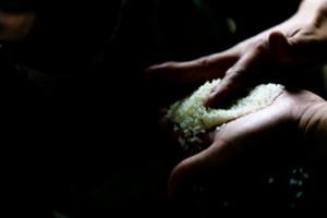 鹿児島の米匠山口米店五ツ星お米マイスター霧島市隼人のお米屋さん